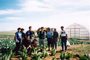 1999tsogfield